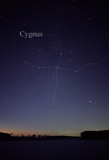 [The constellation Cygnus]