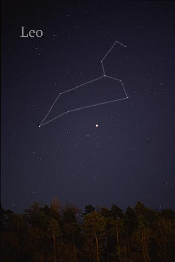 [The constellation Leo]